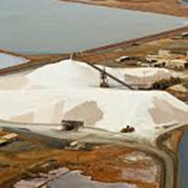 Dampier Salt